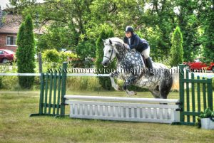 Equestrian Jumping Hamilton Hunt Club